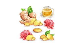 Inilah Beberapa Jenis Herbal untuk Asam Lambung yang Aman Dikonsumsi